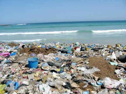 beach trash 1