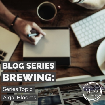 Blog Series Brewing